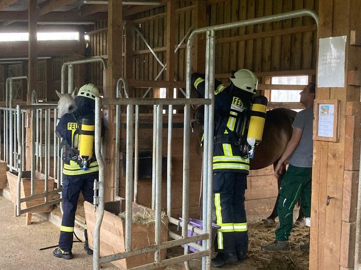 FW-OE: Feuerwehr-Gruppenüben mal tierisch anders