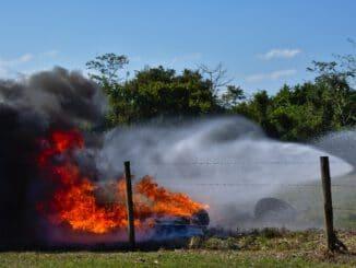 Fire Smoke Emergency Nature  - RonaldPlett / Pixabay