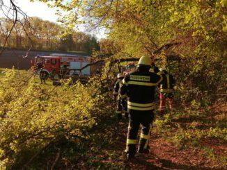 FW Eigeltingen: Ausgelöste Brandmeldeanlage durch umgestürzte Bäume