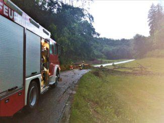 FW Eigeltingen: Umgestürzte Bäume nach Unwetter